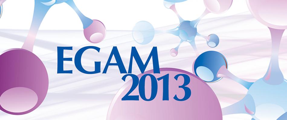 EGAM-2013