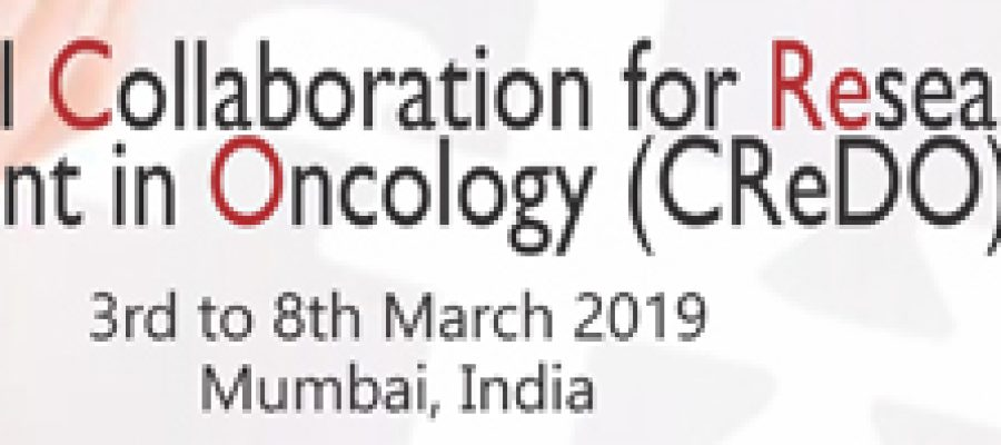 International Collaboration For Research Methods Development In Oncology (CREDO) Workshop