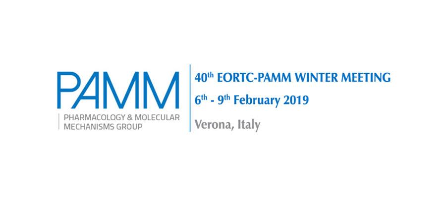 Pharmacology & Molecular Mechanisms Group (PAMM)