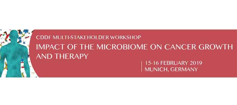 cddf workshop